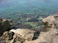 Golfo del Cofano - mare stupendo - 29 luglio 2009  - San vito lo capo (948 clic)