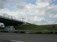 gregge sotto il ponte - 1 maggio 2007  - Fulgatore (2028 clic)