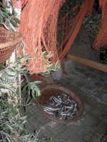 Presepe Vivente curato dall'Istituto Comprensivo G. Pascoli (152) - 22 dicembre 2007   - Castellammare del golfo (630 clic)