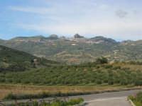 Caltabellotta vista dalla campagna di Ribera - 9 novembre 2008   - Caltabellotta (938 clic)