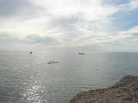 spiaggia ricoperta dalle alghe e mare calmo - 9 novembre 2008  - Ribera (1817 clic)