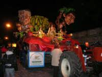 Carnevale 2008 - XVII Edizione Sfilata di Carri Allegorici - La zuppa di Darwin - Associazione Paparella - 3 febbraio 2008  - Valderice (849 clic)