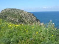 Golfo di Castellammare - la costa tra Guidaloca e Castellammare del Golfo - 5 aprile 2009   - Castellammare del golfo (819 clic)