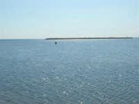 un pescatore, con canna da pesca, nell'acqua bassa al di là del porto - 28 settembre 2008  - Trapani (1025 clic)