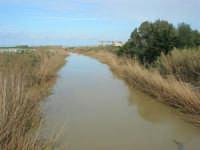 Fiume San Bartolomeo - 16 febbraio 2009  - Castellammare del golfo (3386 clic)