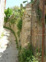 vicolo di periferia - 23 aprile 2006   - Palazzo adriano (1208 clic)