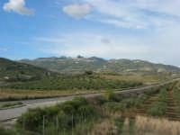 Caltabellotta vista dalla campagna di Ribera - 9 novembre 2008   - Caltabellotta (974 clic)