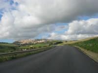 sulla strada che porta a Salemi - 6 gennaio 2009  - Salemi (2586 clic)