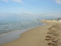 Spiaggia Plaja - 3 marzo 2009  - Castellammare del golfo (1336 clic)