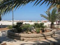 giardino pubblico: la vasca trasformata in aiuola - spiaggia affollata - 30 agosto 2008   - San vito lo capo (674 clic)