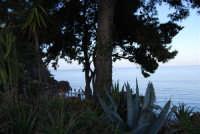 baia di Guidaloca - 3 marzo 2008  - Castellammare del golfo (550 clic)