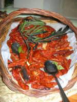 peperoncini - C.da Digerbato - Tenuta Volpara - 21 dicembre 2008   - Marsala (1680 clic)