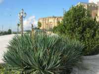 piazzale antistante al Castello dei Grifeo e Chiesa dl Purgatorio - 4 ottobre 2009   - Partanna (1601 clic)