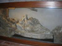 all'interno della Chiesa del Collegio dei Gesuiti - 13 ottobre 2007  - Trapani (1232 clic)