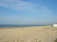 spiaggia di ponente - 15 marzo 2009   - Balestrate (3847 clic)