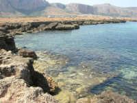Golfo del Cofano: paesaggio brullo, mare spettacolare - 23 agosto 2008  - San vito lo capo (538 clic)