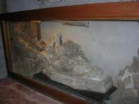 all'interno della Chiesa del Collegio dei Gesuiti - 13 ottobre 2007  - Trapani (861 clic)