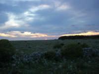 al tramonto - 19 aprile 2009  - San vito lo capo (1836 clic)