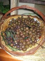 olive - C.da Digerbato - Tenuta Volpara - 21 dicembre 2008   - Marsala (2152 clic)