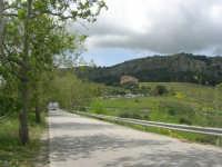 Tempio - 1 maggio 2009  - Segesta (4175 clic)