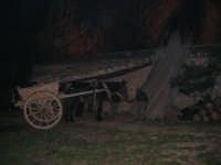 Il Presepe Vivente di Custonaci nella grotta preistorica di Scurati (grotta Mangiapane) (128) - 26 dicembre 2007   - Custonaci (1144 clic)