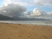 Zona Battigia - la spiaggia ed il mare d'inverno - 8 febbraio 2009  - Alcamo marina (2460 clic)