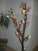 Istituto Comprensivo Pascoli - Aspettando Pasqua, uova decorate crescono sugli alberi! - 7 aprile 2006   - Castellammare del golfo (1082 clic)