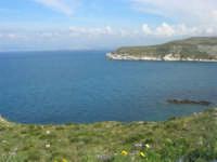 Golfo di Castellammare - la costa tra Guidaloca e Castellammare del Golfo - 5 aprile 2009   - Castellammare del golfo (893 clic)