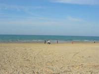 spiaggia di ponente - 15 marzo 2009   - Balestrate (3876 clic)