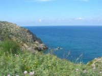 Golfo di Castellammare - la costa tra Guidaloca e Castellammare del Golfo - 5 aprile 2009   - Castellammare del golfo (883 clic)