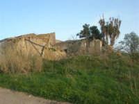 antico baglio - 3 marzo 2009  - Alcamo (2478 clic)