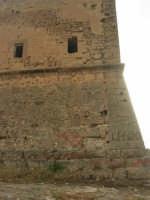 Torre Pozzillo: particolare - 1 giugno 2008  - Cinisi (1156 clic)