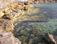 Golfo del Cofano - mare e scogli - 29 luglio 2009   - San vito lo capo (1180 clic)