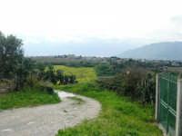campagna alcamese e case di periferia - 23 febbraio 2009   - Alcamo (2143 clic)