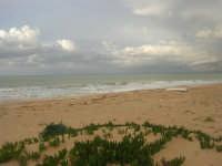 Zona Battigia - la spiaggia ed il mare d'inverno - 8 febbraio 2009  - Alcamo marina (2635 clic)