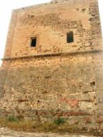 Torre Pozzillo: particolare - 1 giugno 2008  - Cinisi (1267 clic)