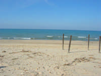 zona Canalotto - 28 febbraio 2009   - Alcamo marina (3353 clic)