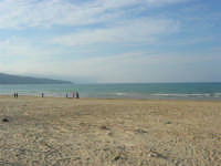 spiaggia di ponente - 15 marzo 2009   - Balestrate (3356 clic)