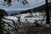neve sul monte Bonifato - 15 febbraio 2009   - Alcamo (2312 clic)