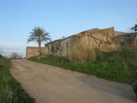antico baglio - 3 marzo 2009  - Alcamo (2497 clic)