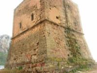 Torre Pozzillo: particolare - 1 giugno 2008  - Cinisi (1240 clic)