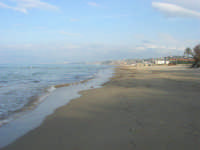Spiaggia Plaja - 3 marzo 2009  - Castellammare del golfo (1161 clic)