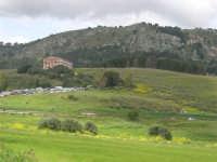 Tempio - 1 maggio 2009  - Segesta (4766 clic)
