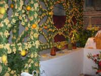 Cene di San Giuseppe - 15 marzo 2009   - Salemi (2173 clic)
