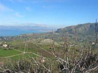 l'entroterra ed il Golfo di Castellammare - 21 febbraio 2009  - Castellammare del golfo (1868 clic)