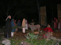 Parco Urbano della Misericordia - LA BIBBIA NEL PARCO - Quadri viventi: 8. Gesù entra in Gerusalemme - 5 gennaio 2009   - Valderice (2684 clic)