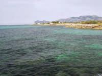 il mare, la costa - 1 giugno 2008  - Cinisi (1421 clic)