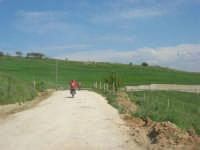 motocross - 3 maggio 2009  - Buseto palizzolo (3349 clic)
