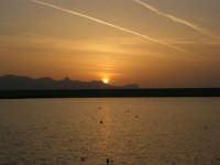tramonto sul porto - 24 maggio 2008  - Balestrate (1007 clic)