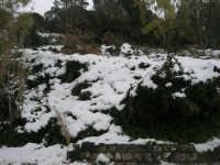 neve sul monte Bonifato - 15 febbraio 2009     - Alcamo (1912 clic)
